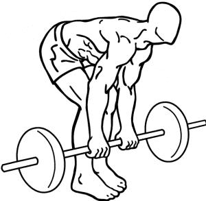 Drawing depicting a man doing a deadlift
